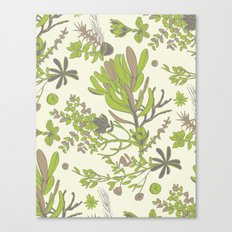 Cream Cradle Flora Canvas Print