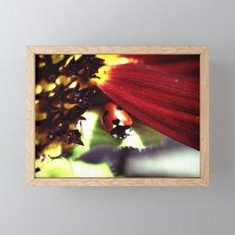 Heart Shaped Spot Framed Mini Art Print