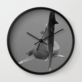 Swim Away Wall Clock