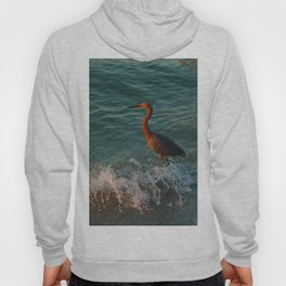 Reddish At Sunset Hoody