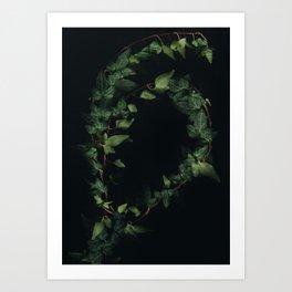 Hedera helix Art Print