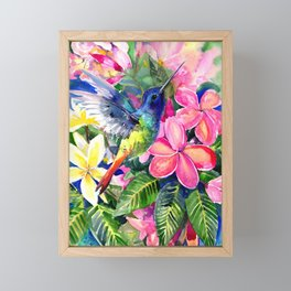 Hummingbird and Plumeria Florwers Tropical bright colored foliage floral Hawaiian Flowers Framed Mini Art Print