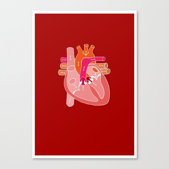 Heart Diagram Canvas Print
