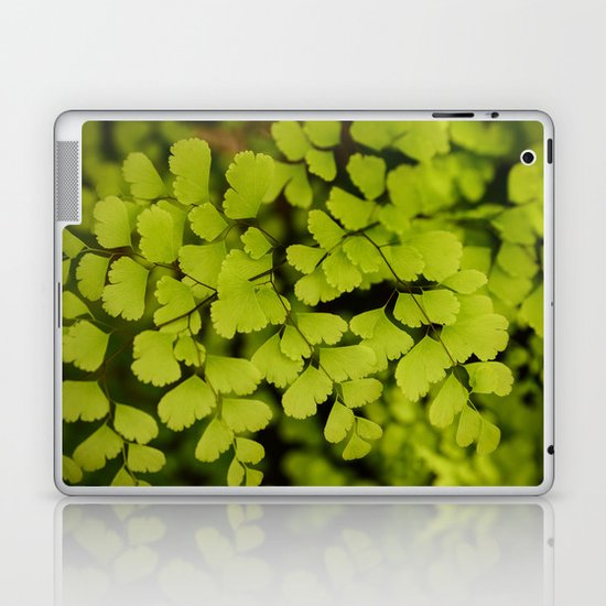 Maidenhair Fern Laptop & iPad Skin