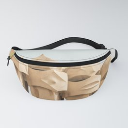 Idealistic Fanny Pack