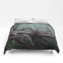Mountains-to-Sea Trail, North Carolina. Comforters