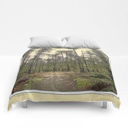 LODGEPOLE PINE Comforters