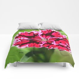 Flashy Dianthus Flower Comforters