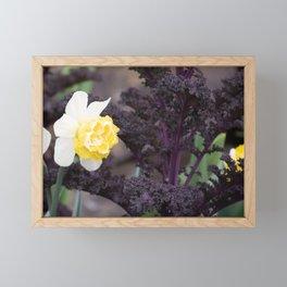 Daffodil and Purple Kale Framed Mini Art Print