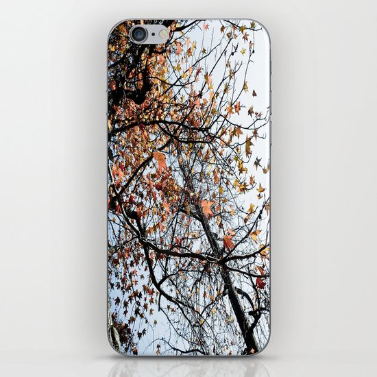 Fall II iPhone & iPod Skin