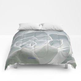 Succulent in the Sun Comforters