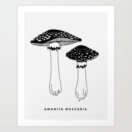Amanita Muscaria Mushrooms Art Print