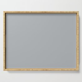 Best Seller Ultra Pale Grey Solid Color Parable to Jolie Paints French Grey - Shade - Hue - Colour Serving Tray