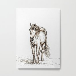 Standing Horse 1816 By Jea Metal Print