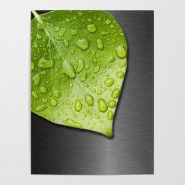 Green Wet Leaf & Metallic Background Poster