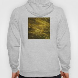Classic Vintage Gold Faux Marble With Gold Veins Hoody