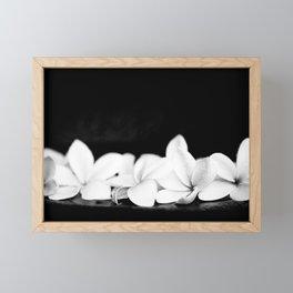 Singapore White Plumeria Flowers the Fragrance of Hawaii Framed Mini Art Print