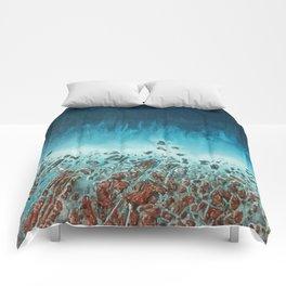 Coast Comforters