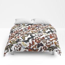 Butterflies of Maine Pattern Comforters