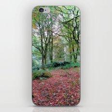 Thornthwaite iPhone & iPod Skin
