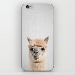 Alpaca - Colorful iPhone Skin