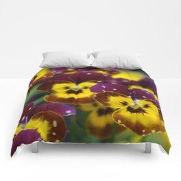 Polka Dotted Pansies Comforters