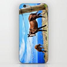 Horses against a blue sky iPhone & iPod Skin