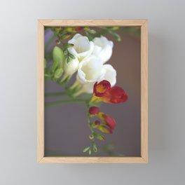 Fresia in freefall Framed Mini Art Print