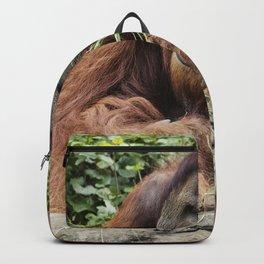 Orangutan at the Cincinnati Zoo and Botanical Garden Backpack