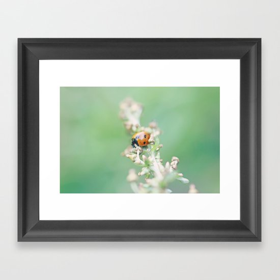 Enchanted Lady Framed Art Print