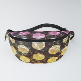 Carbonation Fanny Pack