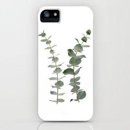 Eucalyptus Branches I iPhone Case