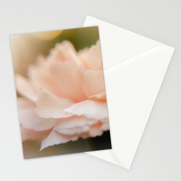 """Pretty in Peach"" Stationery Cards"