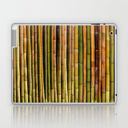 Bamboo fence, texture Laptop & iPad Skin