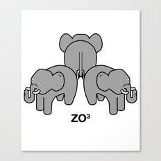 zo3 Canvas Print