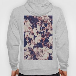 Cats. Forever. Hoody