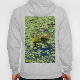 Sneaky Green Frog Hoody