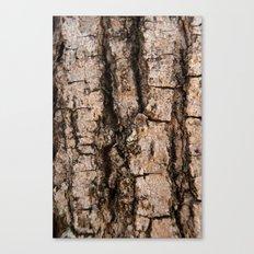 Bark aberration Canvas Print