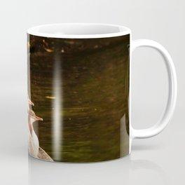 Common Merganser Family Coffee Mug
