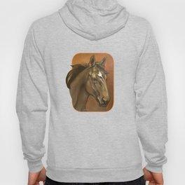 Sound Reason - Thoroughbred Stallion Hoody