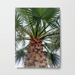 Under a Palm Tree Metal Print