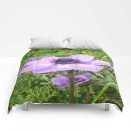 One Delicate Pale Lilac Anemone Coronaria Wild Flower Comforters