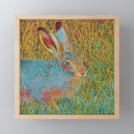 Popular Animals - Bunny 2 Framed Mini Art Print