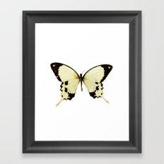 Butterfly #1 Framed Art Print