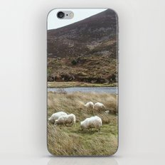 Irish Countryside iPhone & iPod Skin