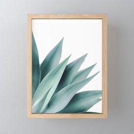 Agave flare II Framed Mini Art Print