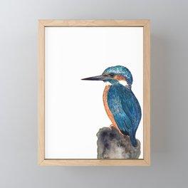 King fisher, blue bird painting, watercolor artwork, wall art Framed Mini Art Print