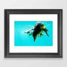 Dive 2 Framed Art Print