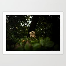 The Enchanted Forest (II) Art Print