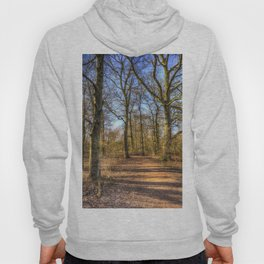 Spring Forest Path Hoody
